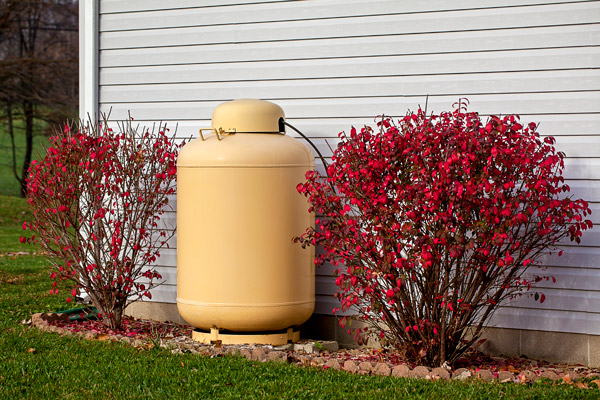 Tan propane tank outside grey home with two red bushes